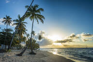 Scenic view of palm trees growing at Pigeon Point Beach against blue sky during sunset, Trinidad and Tobago, Caribbean - RUNF03194
