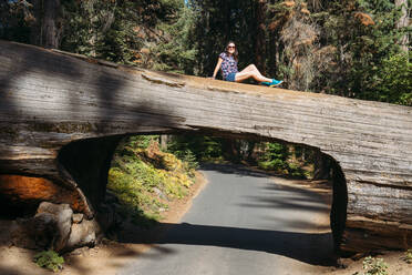 Woman sitting on top of a Tunnel Log in Sequoia National Park, California, USA - GEMF03164