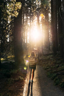 Woman with backpack hiking in the forest at sunset in Sequoia National Park, California, USA - GEMF03170