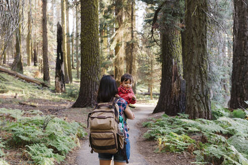 Mother holding a little girl in the forest in Sequoia National Park, California, USA - GEMF03173
