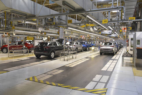 Modern automatized car production in a factory - LY00952