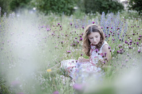 Portrait of girl sitting on a flower meadow - STBF00420