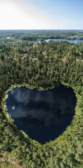 Heart-shaped lake surrounded by forest - JOHF01459