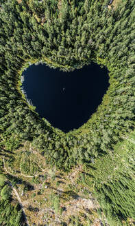 Heart-shaped lake surrounded by forest - JOHF01462
