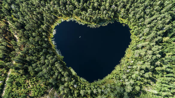 Heart-shaped lake surrounded by forest - JOHF01465