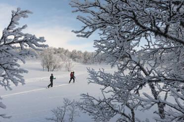 People skiing - JOHF01474