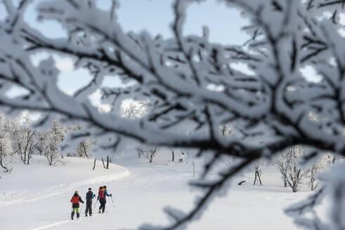 People skiing - JOHF01486