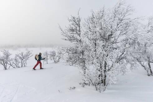 Person skiing - JOHF01498