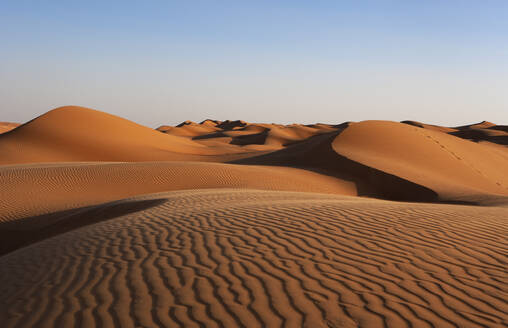Sultanate Of Oman, Wahiba Sands, dunes in the desert - WWF05271