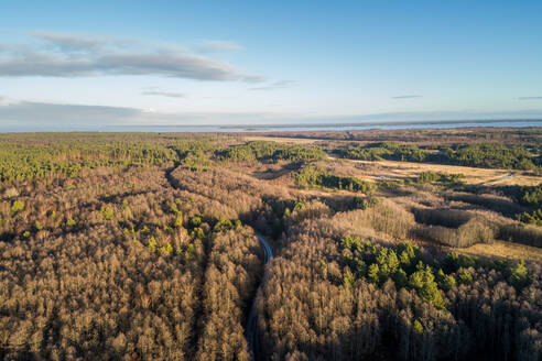 Aerial view of an empty road in the forest of Norrby on Vormsi Island in Estonia - AAEF04026