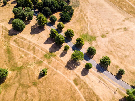 Aerial view of an indian summer shows the effects of climate change as a usually green park is transformed to straw-coloured land, following a long lack of rain, Bristol, United Kingdom - AAEF04353