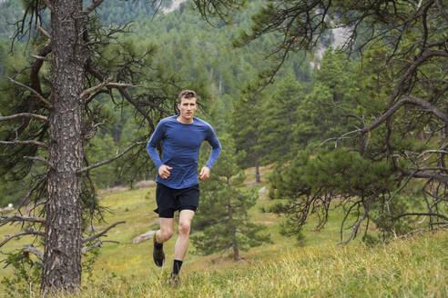 Man runs through meadow in Chautauqua above Boulder, Colorado - CAVF63381