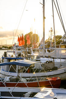 Germany, Schleswig-Holstein, Niendorf, Various boats moored in harbor at sunset - EGBF00320