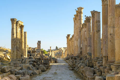 Colonnaded street in ancient Roman city of Gerasa, Jerash, Jordan - CAVF64456
