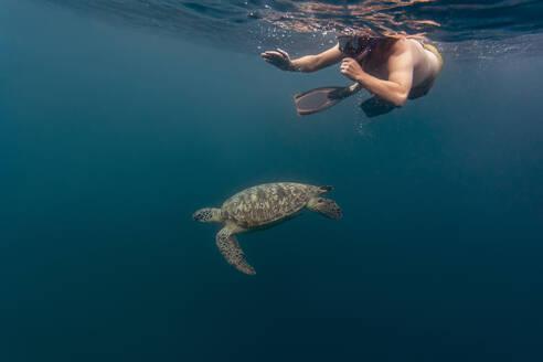 Man diving with turtle, Gili island, Bali - KNTF03633