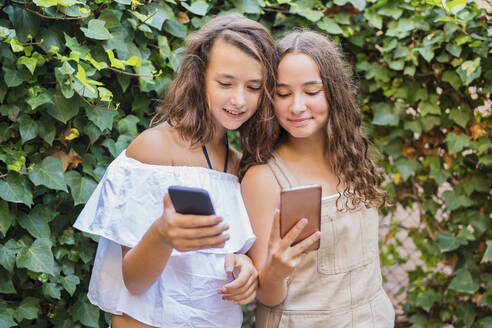 Young girls using smartphone on ivy background - DLTSF00240