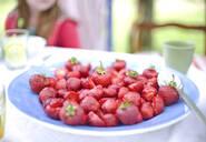 Strawberries on plate - JOHF02496