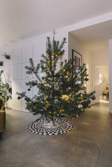 Decorated pine Christmas tree in living room - MFF04860