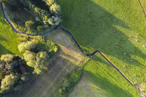 Germany, Bavaria, Konigsdorf, Aerial view of flock of sheep grazing in pasture alongZellwieser Muhlbach tributary - SIEF09147