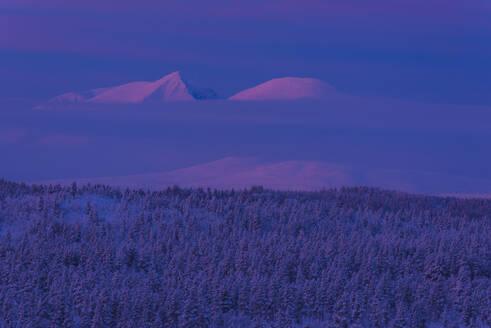 Winter landscape at dusk - JOHF03084
