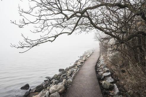Path at sea - JOHF03366