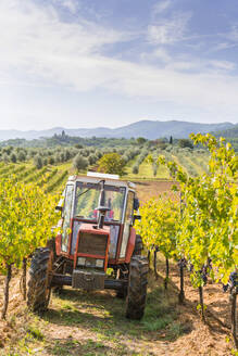Tractor parked in a vineyard - MGIF00792