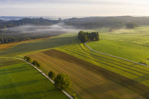 Germany, Bavaria, Dietramszell, Aerial view of countryside fields at foggy dawn - LHF00723