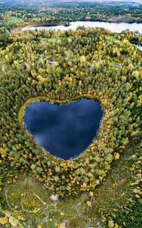 Heart-shaped lake surrounded by forest - JOHF04023