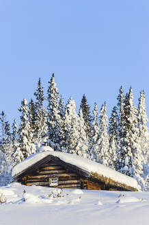 Wooden house at winter - JOHF04143