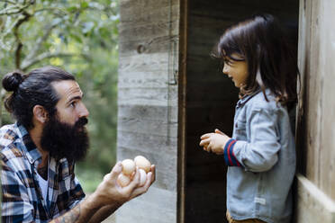 Father and kid collecting eggs at chicken coop on an organic farm - SODF00094
