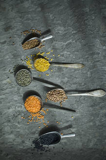 Spoons of colorful lentils - ASF06513