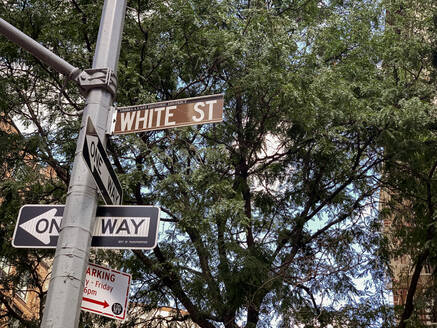 NYC, New York,/United States - Sept, 25, 2019: View of White St Street sign in NYC - CAVF65427