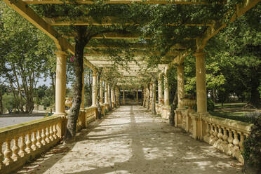 View of beautiful passage full of plants in the park, Aveiro, Portugal - AHSF00937