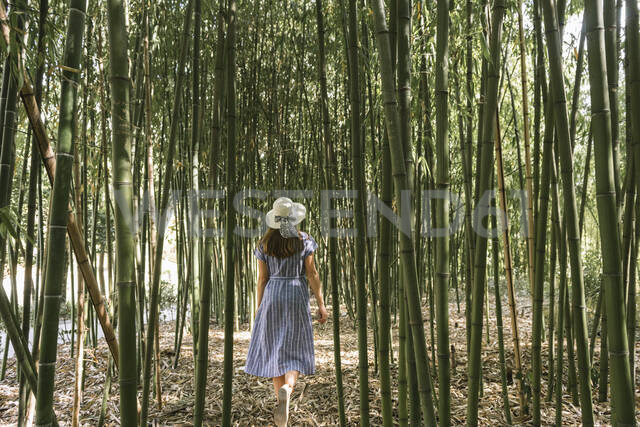 Rear view of woman walking in a bamboo forest, Aveiro, Portugal - AHSF00943 - Hernandez and Sorokina/Westend61