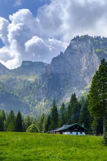 Hintere Längentalalm, Längental, im Hintergrund Benediktenwand, bei Arzbach, Isarwinkel, Oberbayern, Bayern, Deutschland - LBF02740