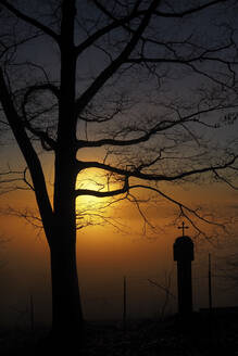 Germany, Bavaria, Silhouettes of bare tree and landmark shrine at sunset - HUSF00104