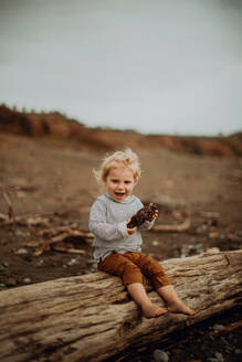 Toddler resting on fallen tree trunk on beach - ISF22353