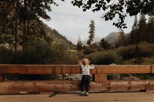Female toddler looking out at river from rural bridge, rear view, Mineral King, California, USA - ISF22380