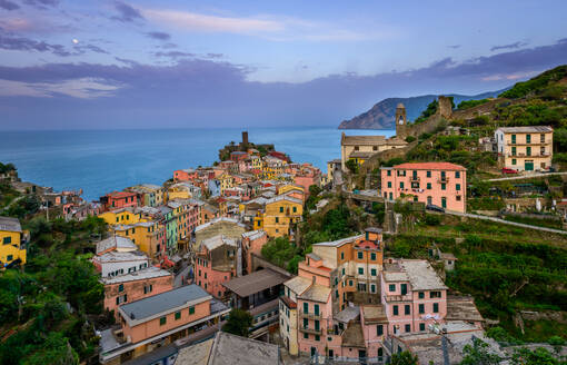 Aerial view of Vernazza cityscape, Italy. - AAEF05090