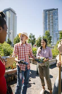 Man teaching gardening to young adults in sunny, urban community garden - HEROF39368
