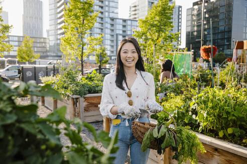 Portrait happy, carefree young woman harvesting fresh vegetables in urban community garden - HEROF39467
