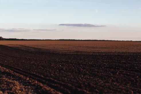 Germany, Brandenburg, Linum, Brown plowed field at dusk - JUBF00356