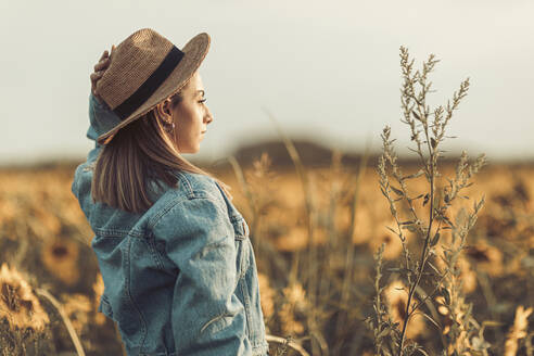 Young woman with hat and jeans jacket in a sunflowers field in the evening light - OCAF00425