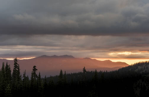 Evening light on mountain peaks, view from Hurricane Ridge, Olympic National Park, UNESCO World Heritage Site, Washington State, United States of America, North America - RHPLF12454
