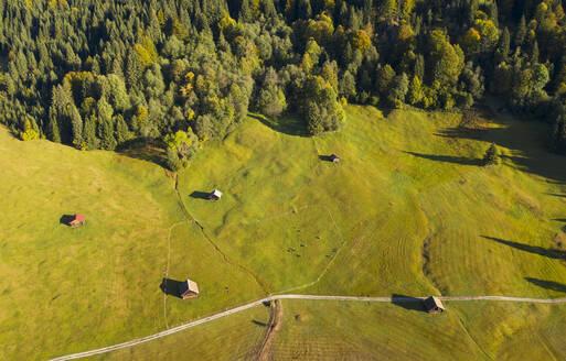 Buckelwiesen am Geroldsee, Kr�n, Werdenfelser Land, Oberbayern, Bayern, Deutschland, - LHF00737