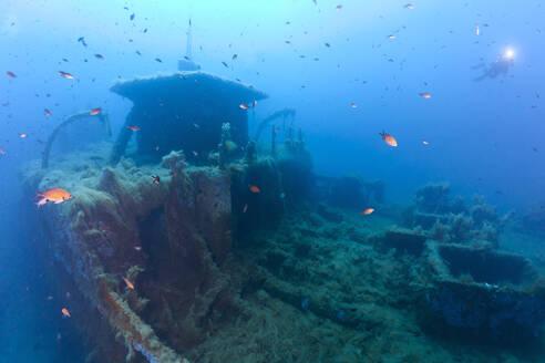 France, Corsica, School of fish swimming over sunken shipwreck of Alcione C tanker - ZC00827