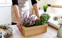 Close-up of woman with flowers inside a cardboard box on table - HAPF03054