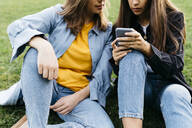 Two friends looking on the smartphone, sitting on a meadow of a park - JRFF03805