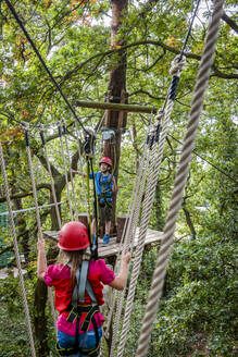 Boy and girl on a high rope course in forest - EGBF00415