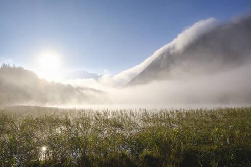 Nebel bei Sonnenaufgang am Ferchensee, bei Mittenwald, Werdenfelser Land, Wettersteingebirge, Oberbayern, Bayern, Deutschland - SIEF09224